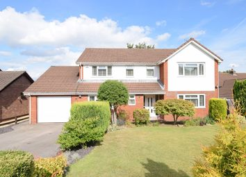 Thumbnail 4 bed detached house for sale in Orchid Court, Ty Canol, Cwmbran