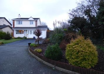 Thumbnail 3 bed detached house for sale in Caer Efail, Lon Capel, Dwyran, Anglesey