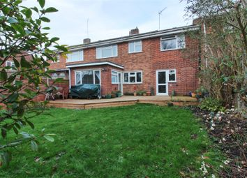 Thumbnail 4 bed semi-detached house for sale in Snells Mead, Buntingford