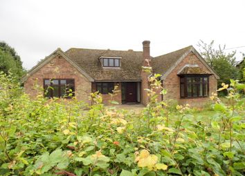 Thumbnail 4 bed detached bungalow to rent in Woodlands Road, Raydon, Ipswich
