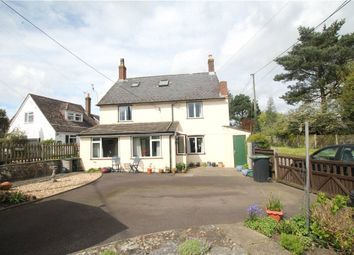 Thumbnail 4 bed detached house for sale in Pleck, Hazelbury Bryan, Sturminster Newton