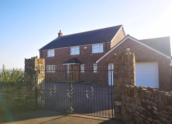 Thumbnail 4 bed detached house to rent in Kerrin Lane, Woolaston, Lydney