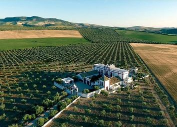 Thumbnail 7 bed farmhouse for sale in Seville, Spain