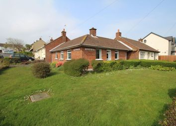 Thumbnail 2 bedroom bungalow for sale in Donaghadee Road, Groomsport, Bangor