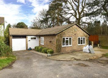 Thumbnail 3 bed bungalow to rent in Magdalene Road, Owlsmoor, Sandhurst, Berkshire