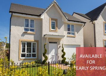 "Thumbnail 4 bedroom detached house for sale in ""Fernie"" at Newtonmore Drive, Kirkcaldy"