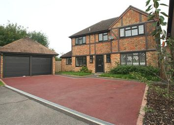 Thumbnail 4 bed detached house to rent in Ravenscroft, Hook, Hampshire
