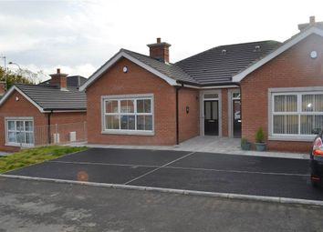 Thumbnail 2 bed semi-detached bungalow to rent in 6, Millmount Villas, Banbridge