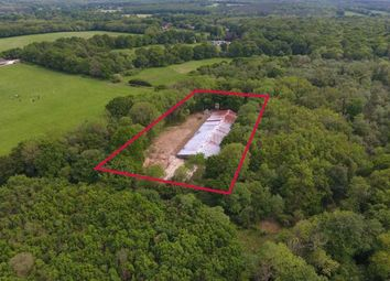 Thumbnail Land for sale in High Street Green, Chiddingfold, Godalming, Surrey