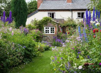 Thumbnail 3 bed cottage for sale in Kings Green, Wichenford, Worcester