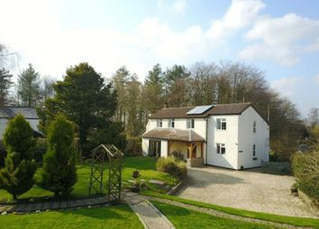 Thumbnail 4 bed detached house for sale in Hillersland Lane, Coleford