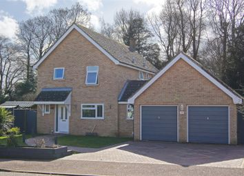 Thumbnail 4 bed detached house for sale in Downing Drive, Great Barton, Bury St. Edmunds