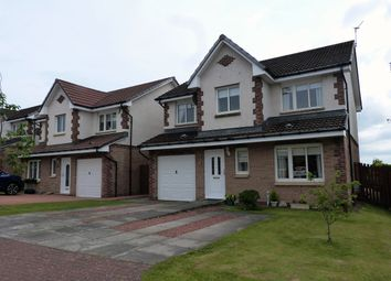 Thumbnail 4 bedroom detached house for sale in Hunters Grove, East Kilbride