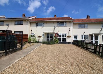 Thumbnail 3 bed terraced house for sale in The Warren, Claxton, Norwich