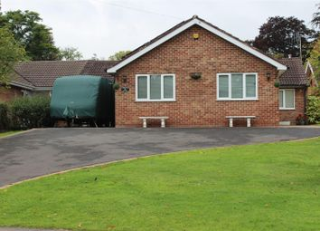 Thumbnail 4 bed bungalow to rent in Hall Farm Road, Duffield, Belper