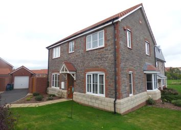 Thumbnail 4 bed detached house to rent in Higher Meadow, Cranbrook, Exeter, Devon