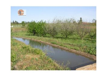 Thumbnail 5 bed country house for sale in Silves, Silves, Silves