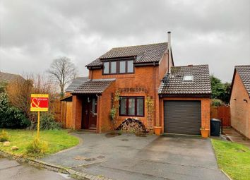 Thumbnail 3 bed detached house to rent in Danehurst Place, Andover