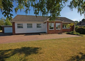 Thumbnail 4 bed detached bungalow for sale in Fellside Close, Ponteland, Newcastle Upon Tyne