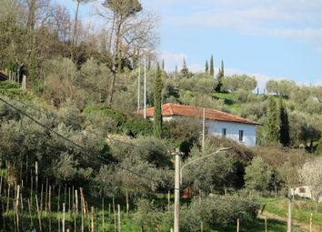 Thumbnail 4 bed detached house for sale in Fivizzano, Massa And Carrara, Italy