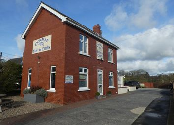 Thumbnail Commercial property for sale in Llechryd, Cardigan