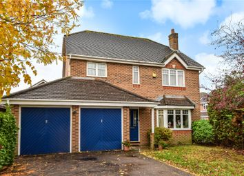 Peacock Close, Chichester, West Sussex PO19