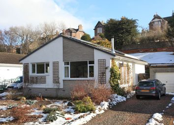 Thumbnail 3 bed bungalow for sale in Ryan Place, Crieff
