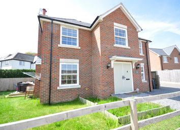 Thumbnail 4 bed detached house to rent in Palmers Lane, Newchurch, Sandown
