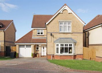 Thumbnail 4 bed detached house to rent in Burdock Close, Harrogate, North Yorkshire