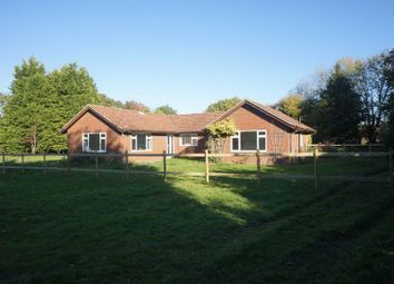 Thumbnail 4 bed bungalow to rent in Redwood Lane, Medstead, Alton