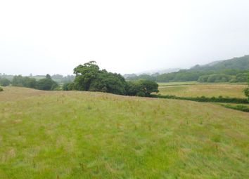 Thumbnail Land for sale in Bethlehem, Llandeilo