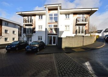 Thumbnail 2 bed flat for sale in Berkshire Close, Ogwell, Newton Abbot, Devon.