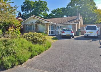 Thumbnail 3 bed detached bungalow for sale in Birch Grove, Cobham