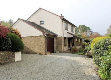 Thumbnail 3 bedroom detached house for sale in Swanpool, Falmouth