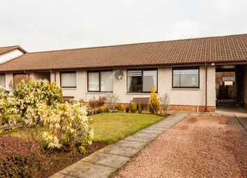 Thumbnail 2 bed semi-detached bungalow for sale in Brontonfield Drive, Bridge Of Earn, Perth