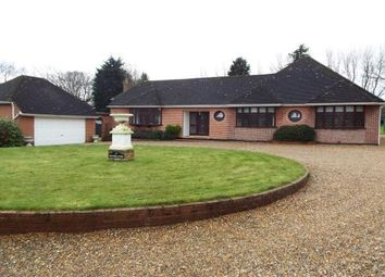 Thumbnail 4 bed detached bungalow to rent in Ingrave Road, Brentwood