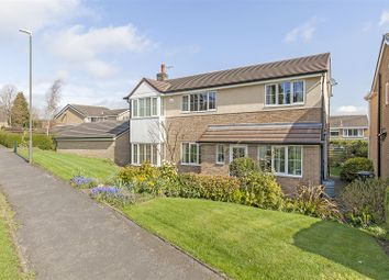 Thumbnail 4 bed detached house for sale in Leabrook Road, Dronfield Woodhouse, Dronfield