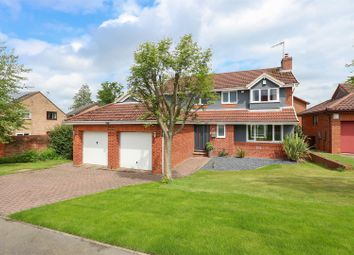 Thumbnail 4 bedroom detached house for sale in Berwick Close, Walton, Chesterfield