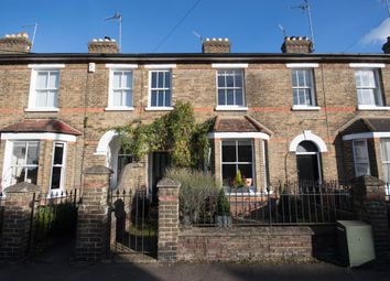 Thumbnail 3 bed terraced house to rent in Raynham Street, Hertford