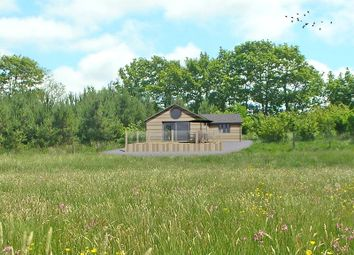 Thumbnail 2 bedroom land for sale in Holsworthy