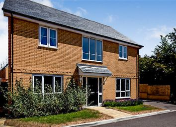 Thumbnail 4 bed detached house for sale in Wheel Gardens, Hailsham, East Sussex