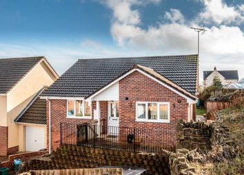 Thumbnail 3 bed detached bungalow for sale in Ranters Green, Bream, Lydney
