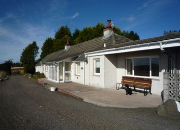 Thumbnail 2 bed detached house to rent in Tealing Road, Auchterhouse, Angus, 0Qx