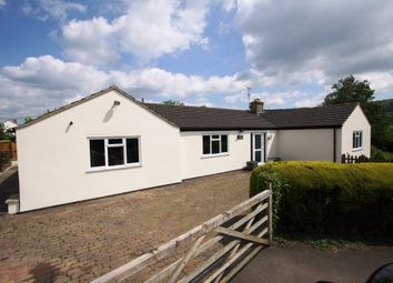 Thumbnail 4 bed detached bungalow for sale in Bath Road, Leonard Stanley, Stonehouse