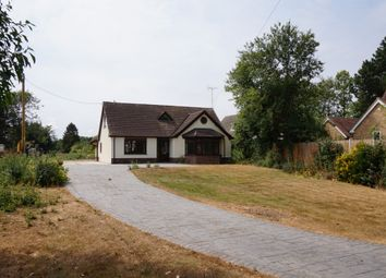 Thumbnail 5 bed detached house for sale in Hadleigh Road, Holton St. Mary, Colchester