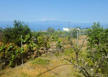 Thumbnail 1 bed finca for sale in Taucho, Adeje, Tenerife, Canary Islands, Spain