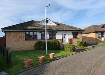 Thumbnail 3 bed bungalow to rent in Heron Way, Mayland, Chelmsford