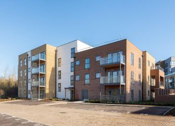 Thumbnail 2 bed property to rent in Milton Keynes