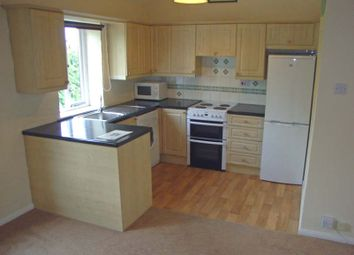 Thumbnail 2 bed flat to rent in Woodbridge Road, Ipswich