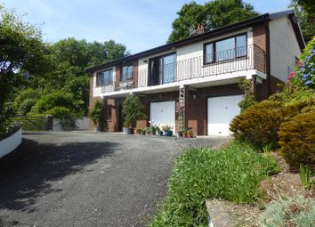 Thumbnail 4 bed bungalow for sale in Llwyndafydd, Llandysul